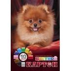 Картон А4 Хатбер 10цв -10л. Пушистый щенок