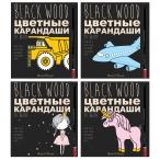 Карандаши 24 цв. Bruno Visconti Black Wood Color пластиковые, 4в.