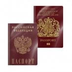 Обложка д/паспорта ERICH KRAUSE Glossy Clear пластик, 188х134мм., 100мк.